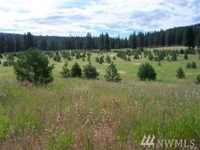 830-(Lot 7) Leo Lane, Cle Elum, WA 98922 (#1280915) :: Better Homes and Gardens Real Estate McKenzie Group