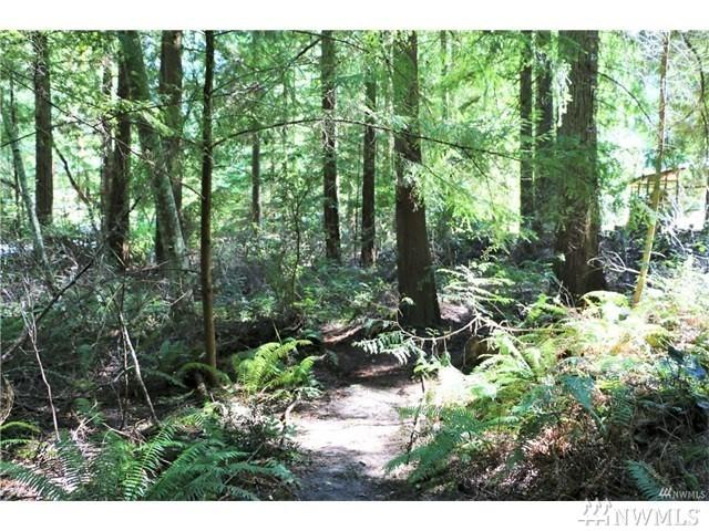 0 Grenville Ct, Port Townsend, WA 98368 (#1281192) :: Crutcher Dennis - My Puget Sound Homes