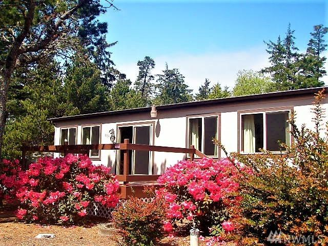 1309 303rd Place, Ocean Park, WA 98640 (#1281961) :: Kwasi Bowie and Associates