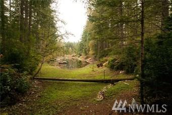3-Lots NE Collins Lake Dr, Tahuya, WA 98588 (#1286320) :: Crutcher Dennis - My Puget Sound Homes