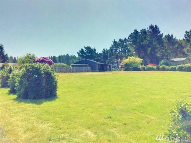 1306 195th St, Long Beach, WA 98631 (#1286473) :: Homes on the Sound