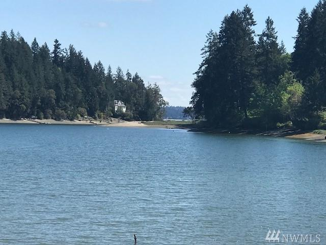 9715 148th Ave NW, Gig Harbor, WA 98329 (#1286908) :: Icon Real Estate Group
