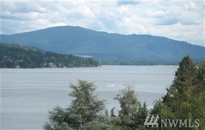 215 W Lake Sammamish Pkwy SE, Bellevue, WA 98008 (#1287796) :: The DiBello Real Estate Group