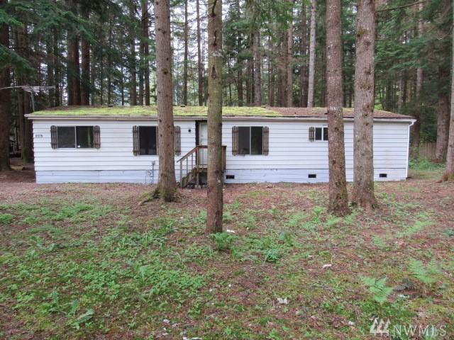 8575 Ginkgo Dr, Maple Falls, WA 98266 (#1288637) :: Better Homes and Gardens Real Estate McKenzie Group