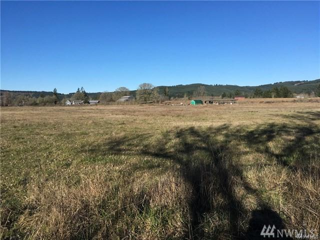 3291 King Rd, Chehalis, WA 98532 (#1289806) :: Better Homes and Gardens Real Estate McKenzie Group