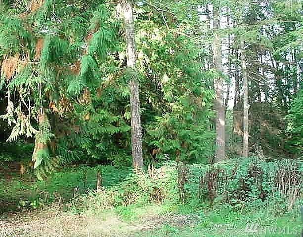 18619 33rd St KP, Longbranch, WA 98351 (#1293127) :: Homes on the Sound