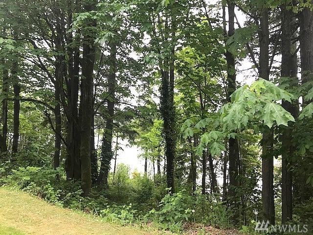 0-Lot 043 Front St NE, Poulsbo, WA 98370 (#1293643) :: Homes on the Sound