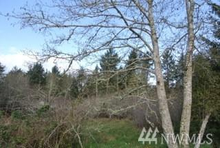 240 And Isle Place, Ocean Park, WA 98640 (#1294226) :: Homes on the Sound