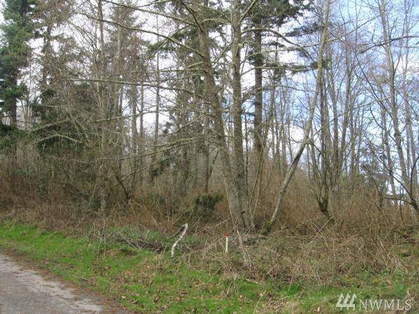 0 Goss Ridge Rd, Freeland, WA 98249 (#1294269) :: Morris Real Estate Group
