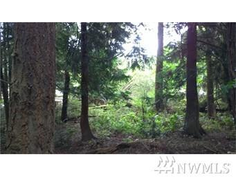 9-XX 49th St, Port Townsend, WA 98368 (#1298407) :: NW Home Experts