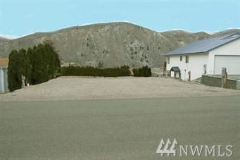 345 W Entiat Dr, Orondo, WA 98843 (#1299282) :: Real Estate Solutions Group