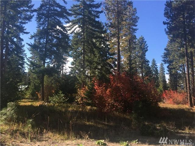4-Lot 4A Revelstoke Rd, Cle Elum, WA 98922 (#1299524) :: Real Estate Solutions Group