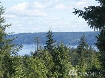 258 E Union Heights Dr, Union, WA 98592 (#1301459) :: Homes on the Sound