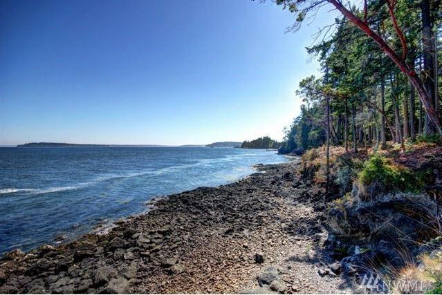 1101 Olele Point Rd, Port Ludlow, WA 98365 (#1303755) :: Chris Cross Real Estate Group