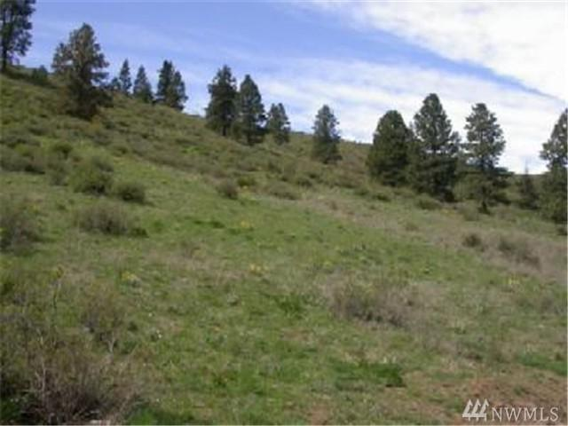 730 Low Rd, Cle Elum, WA 98922 (#1304296) :: Real Estate Solutions Group