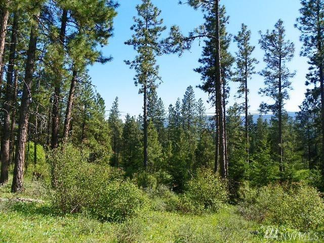 0-Lot 7 Owl Ridge Dr, Cle Elum, WA 98922 (#1305415) :: The Home Experience Group Powered by Keller Williams