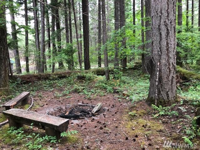 4-lot 4 Cowlitz View Dr, Packwood, WA 98361 (#1308026) :: Real Estate Solutions Group