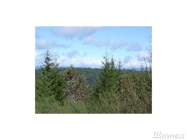 0-Lot 1 NE Klahowya Rd, Belfair, WA 98528 (#1308166) :: Real Estate Solutions Group