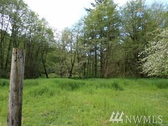 355-#A Lost Valley Rd, Boistfort, WA 98538 (#1308411) :: Real Estate Solutions Group