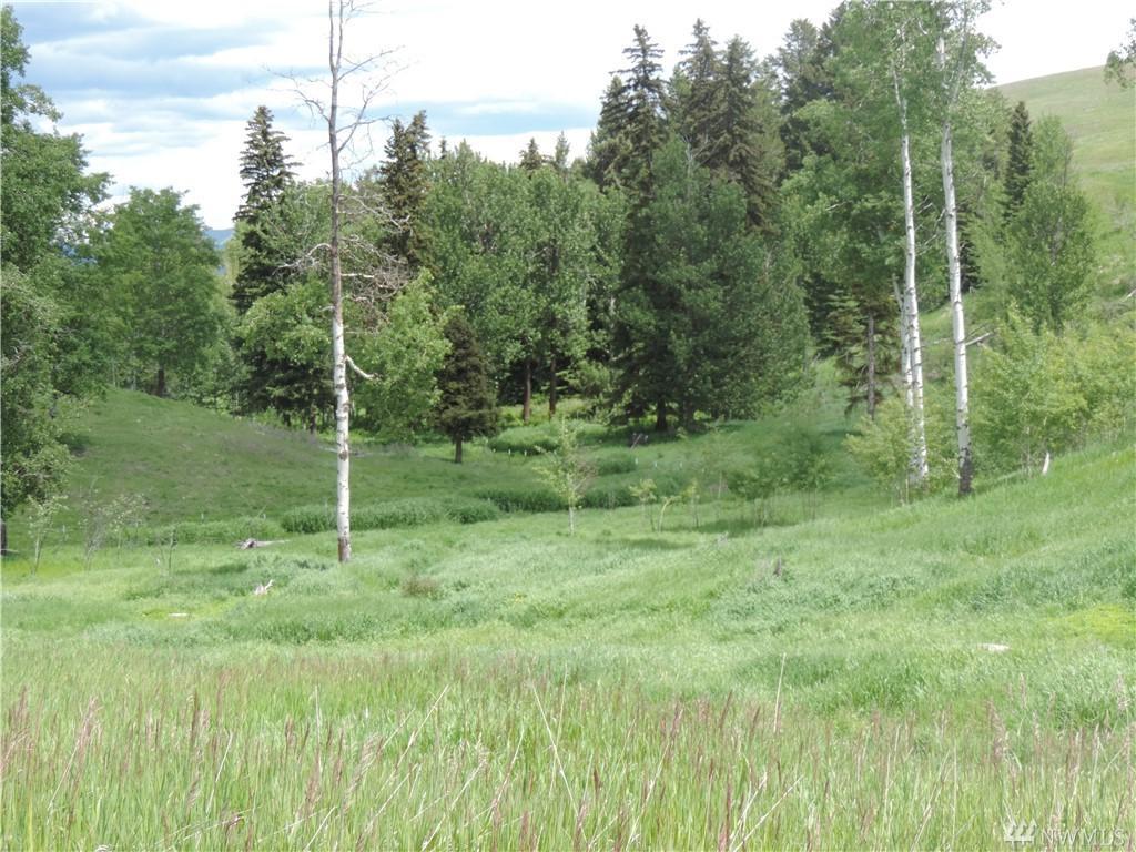 55 Moose Mtn Road - Photo 1