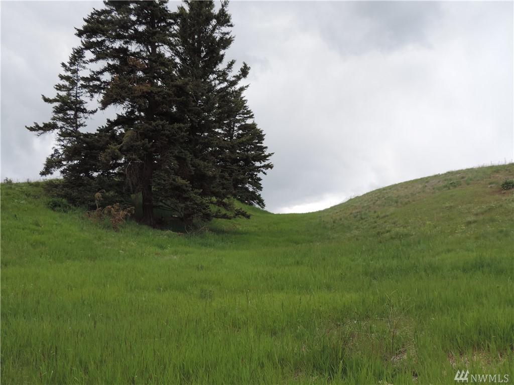 60 Moose Mtn Road - Photo 1