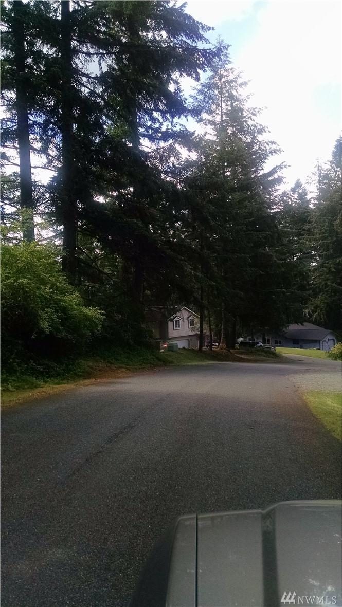 7933 Incline Dr - Photo 1