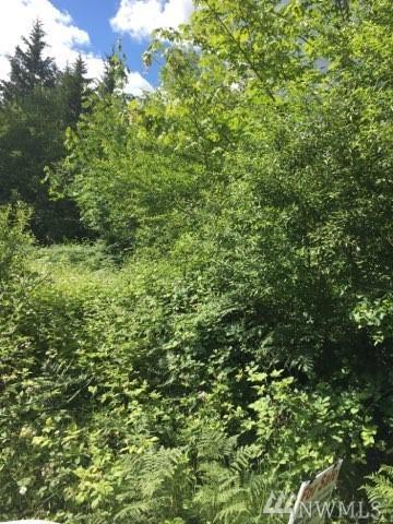 17323 Russian Hill Lane SE, Rainier, WA 98576 (#1312500) :: Keller Williams Realty Greater Seattle