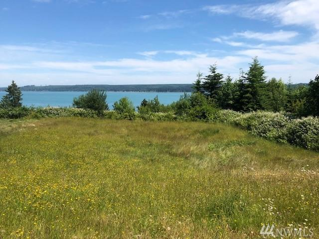 16 Dickey, Port Ludlow, WA 98365 (#1312706) :: Tribeca NW Real Estate