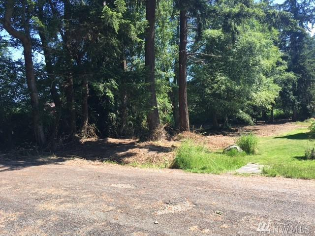 0-Lot 2 Sylvan Dr, Freeland, WA 98249 (#1312749) :: Icon Real Estate Group