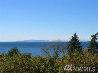 4841 Beach Wy, Ferndale, WA 98248 (#1313793) :: Real Estate Solutions Group