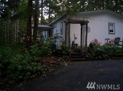 860 N Potlatch, Hoodsport, WA 98548 (#1314904) :: Crutcher Dennis - My Puget Sound Homes