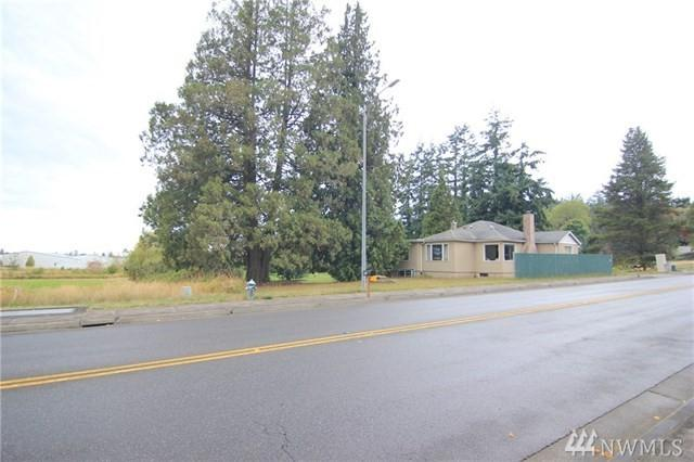 811 Odell Rd, Blaine, WA 98230 (#1315561) :: Tribeca NW Real Estate