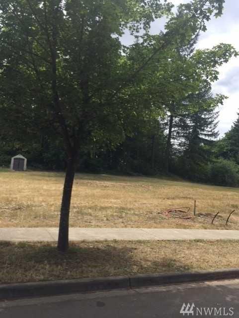 5541 Cheri Estates Dr SE, Olympia, WA 98501 (#1319485) :: Northwest Home Team Realty, LLC