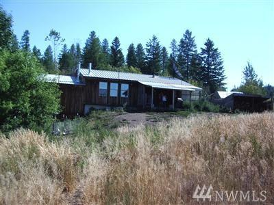 519 Pontiac Ridge Rd, Oroville, WA 98844 (#1320131) :: Real Estate Solutions Group