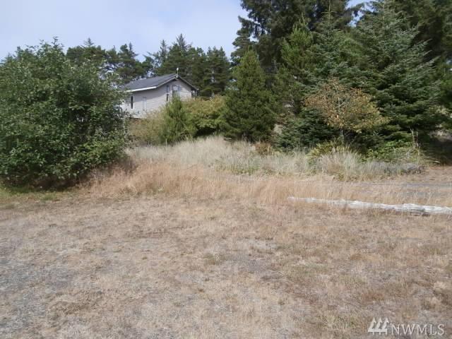 0 Star, Westport, WA 98595 (#1320359) :: Homes on the Sound