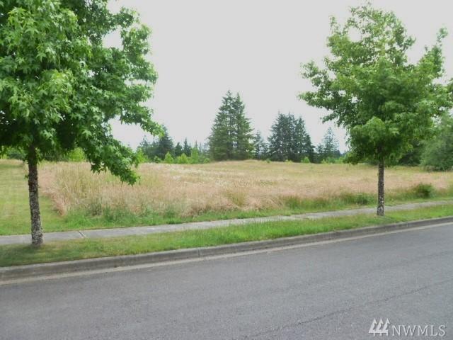 119 Sycamore Lane, Onalaska, WA 98570 (#1320637) :: Keller Williams Realty Greater Seattle