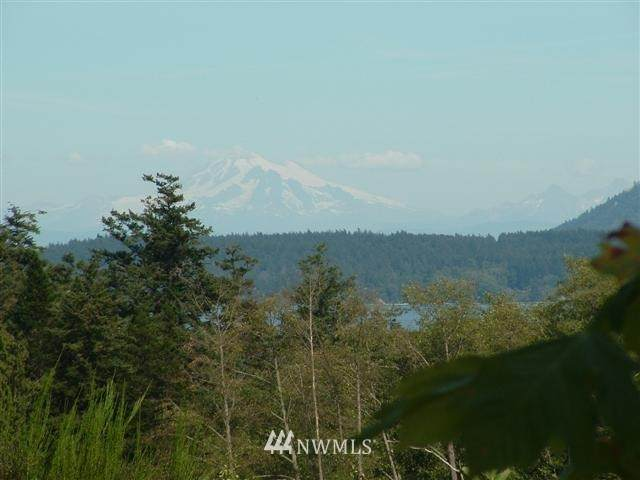 0 Waldron Island, Waldron Island, WA 98297 (#1321471) :: Better Homes and Gardens Real Estate McKenzie Group