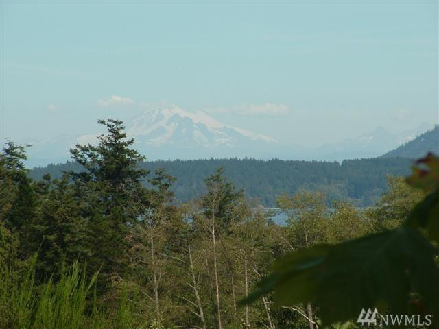 0 Waldron Island, Waldron Island, WA 98297 (#1321471) :: Pacific Partners @ Greene Realty
