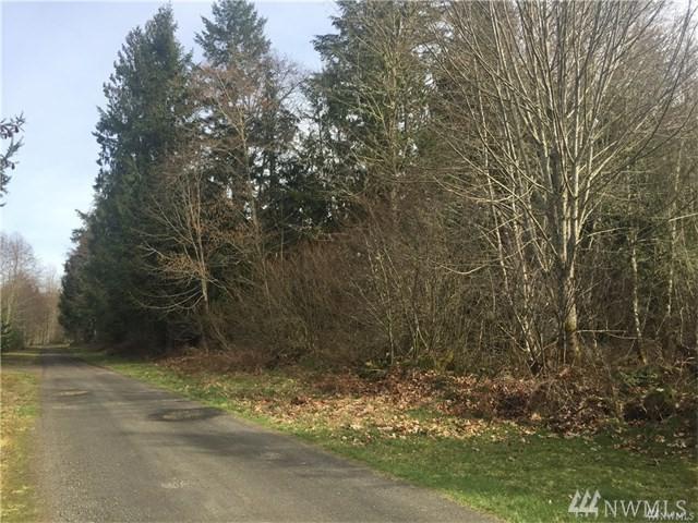498 Toutle Ridge Dr, Toutle, WA 98649 (#1323512) :: Homes on the Sound
