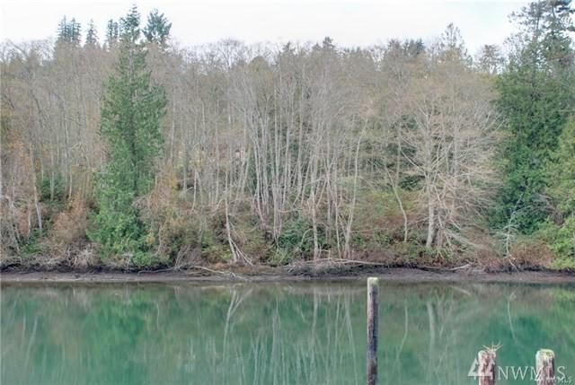 0-Lot 5 South Point Rd, Port Ludlow, WA 98365 (#1326950) :: Pickett Street Properties