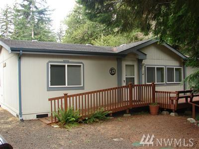 80 N Mountain View Dr, Hoodsport, WA 98548 (#1328794) :: Keller Williams Realty Greater Seattle