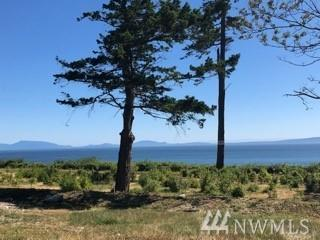 2222 Seabright Lp, Point Roberts, WA 98281 (#1328880) :: Canterwood Real Estate Team