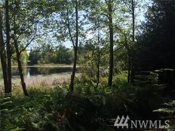 1305 Dayton St SE, Olympia, WA 98501 (#1328958) :: Northwest Home Team Realty, LLC
