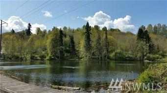 0 Dorothy Lake P/N 628362026 &, Kelso, WA 98626 (#1335590) :: Real Estate Solutions Group