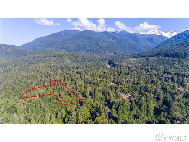 10287 Old Mt. Baker Highway, Glacier, WA 98244 (#1336550) :: Canterwood Real Estate Team