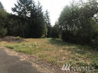 0 Lot 1 Twin Springs Dr, Cathlamet, WA 98612 (#1344180) :: Keller Williams - Shook Home Group