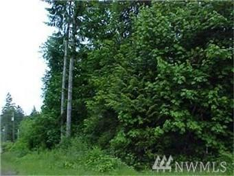 1-Lot Shorecrest Dr, Shelton, WA 98584 (#1353319) :: Keller Williams Realty
