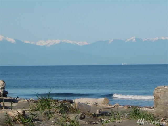 448-x Moran Beach Lane, Oak Harbor, WA 98277 (#1354988) :: The Craig McKenzie Team