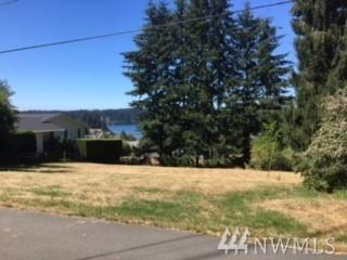 0-xxx Pleasant View Lane, Freeland, WA 98249 (#1355247) :: The Vija Group - Keller Williams Realty