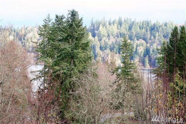 0 Gamble Lane, Port Ludlow, WA 98365 (#1355312) :: Homes on the Sound